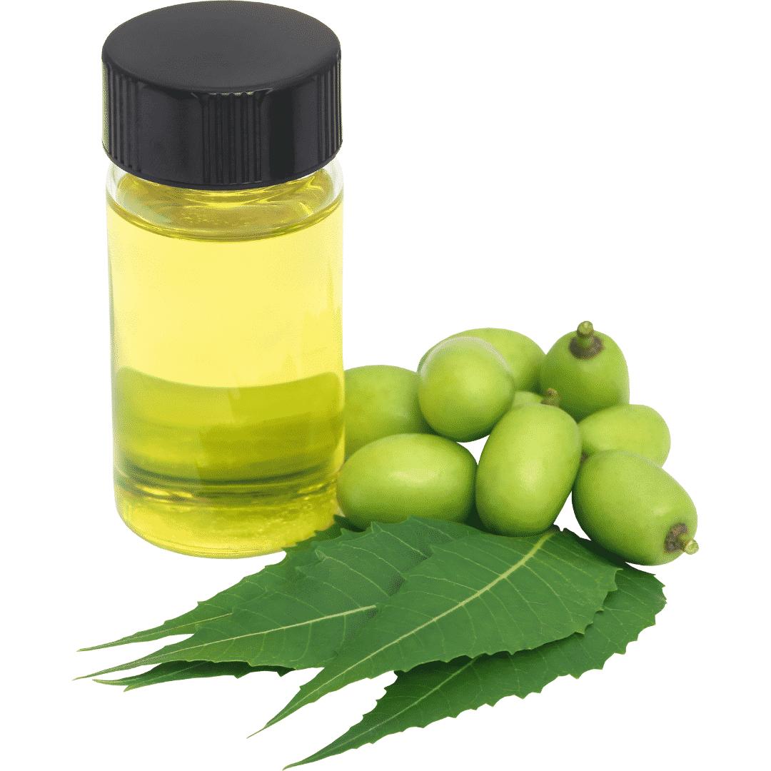 """<img src=""""Sans-titre-93.png"""" alt=""""huile de neem"""">"""