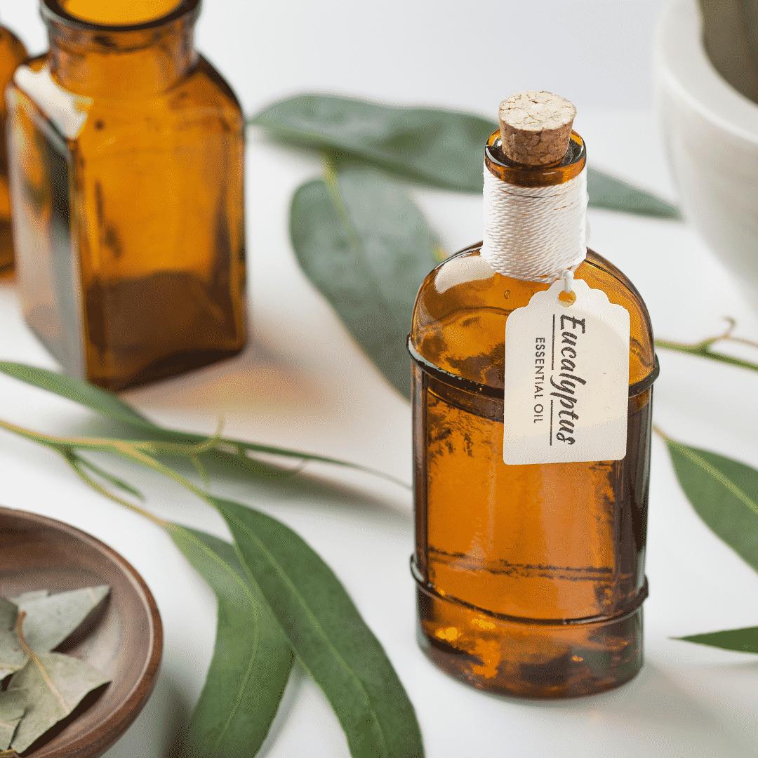 """<img src=""""Sans-titre-80.png"""" alt=""""illustration huile essentielle d'eucalyptus"""">"""