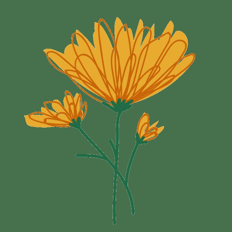 """<img src=""""fleur-de-calendula.png"""" alt=""""fleur de calendula"""">"""